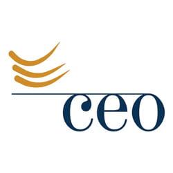 Chief Executives Organization